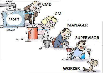 muncitori-sefi