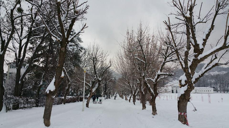 iarna-baia-mare